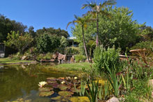 Weeroona Retreat Gardens